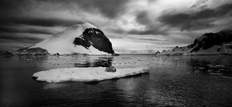 Антарктида №8