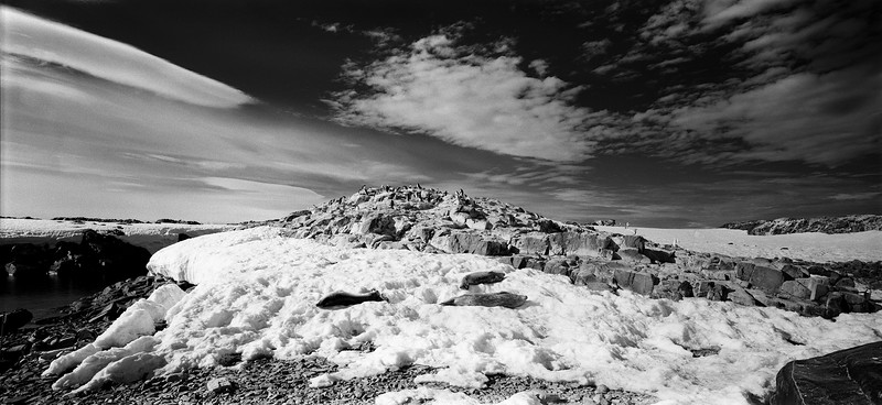 Антарктида №19