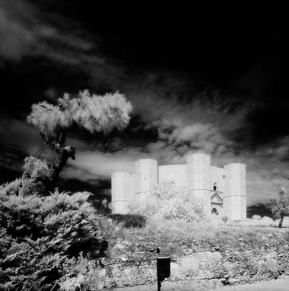 44  Castello del monte 1