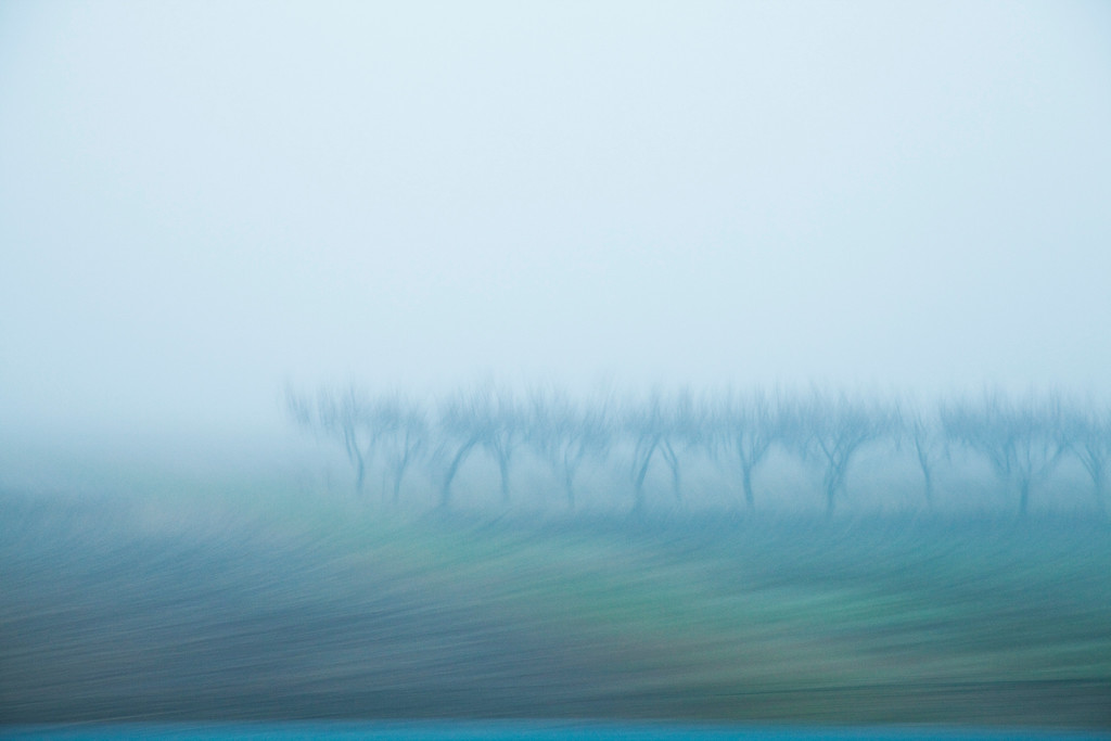 Бегущий виноградник, от Милана до Турина