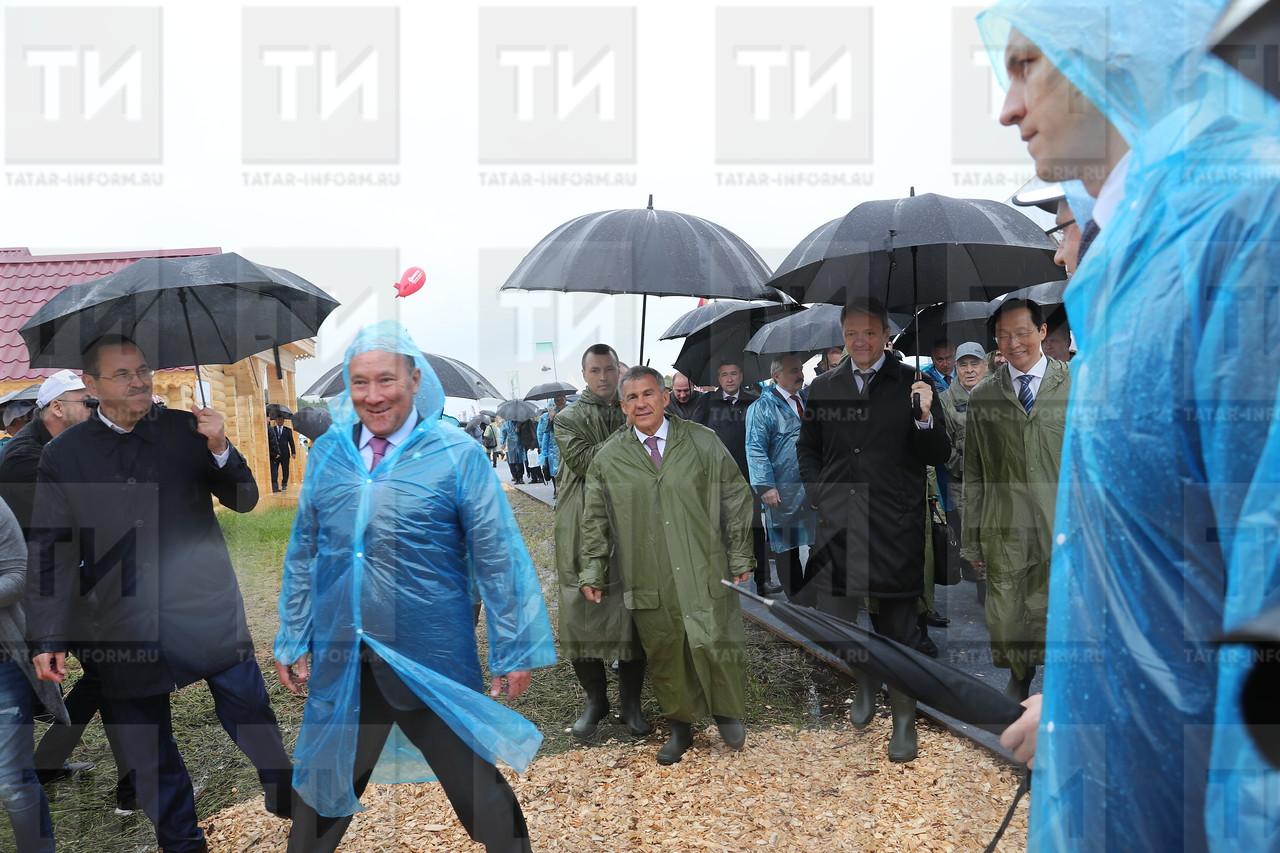 05.07.2017 Всероссийский день поля - 2017 фото: Рамиля Гали