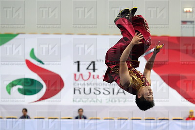 03.10.17 ЧМ по ушу  (фото: Михаил Захаров / ИА Татар-Информ )