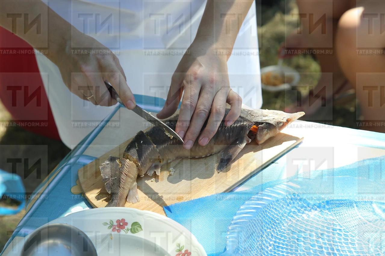 """17.07.2016 - Чемпионат рыбной ловли """"Камский судак"""""""