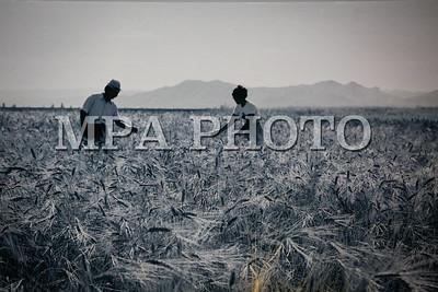"""2019 оны арваннэгдүгээр сарын 18. """"Гамма"""" агентлагийн захирал С.Цацралтын """"Атар60"""" үзэсгэлэнгийн нээлт боллоо. ГЭРЭЛ ЗУРГИЙГ Г.ӨНӨБОЛД/МРА"""