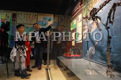 """2016 оны арваннэгдүгээр сарын 16. """"Шинжлэх ухааны ажилтны өдөр""""-ийг тохиолдуулан """"Монголын үлэг гүрвэлийн гайхамшиг"""" үзэсгэлэн боллоо. ГЭРЭЛ ЗУРГИЙГ Г.ӨНӨБОЛД /МРА"""