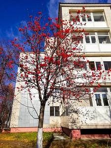 Фото Марата Хаялутдинова