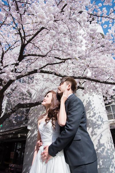 京都婚紗 - 櫻花季 -