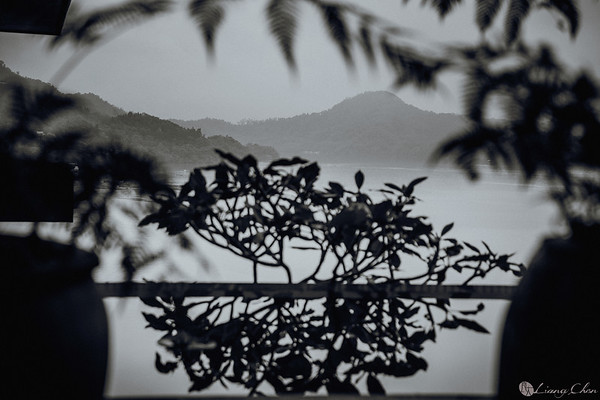 婚禮紀實影像-欣瑜 & 星融