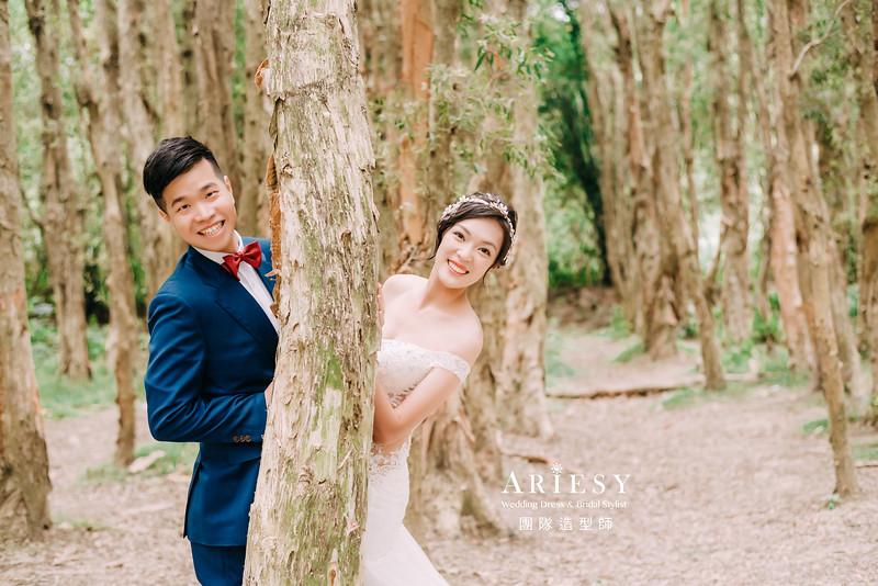 婚紗攝影,婚紗造型,攝影大嘴,新祕Hanya,新娘秘書,自助婚紗,新娘造型,白紗造型,膨鬆盤髮造型