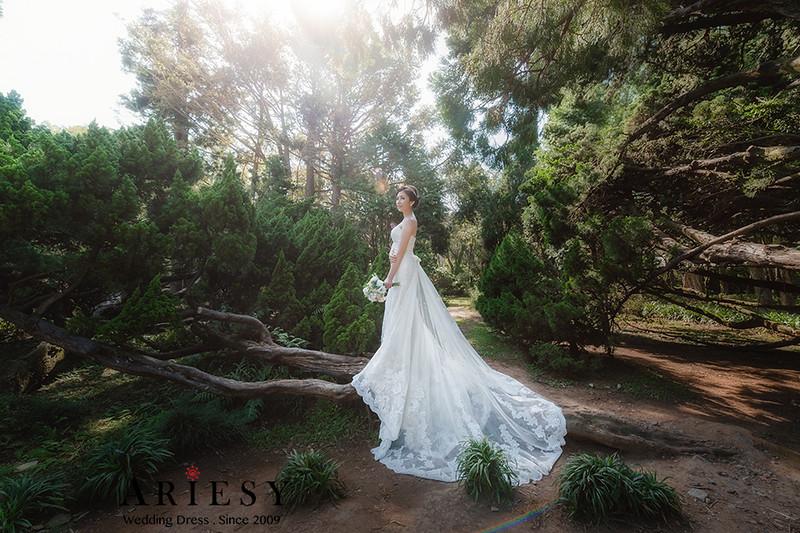 自助婚紗攝影,手工婚紗,禮服出租,婚紗白紗造型,歐美清新風格