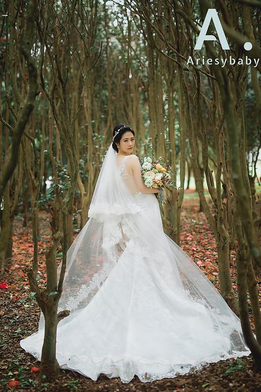 禮服出租,婚紗禮服工作室,新莊自助婚紗,手工婚紗,刺繡蕾絲修身魚尾白紗