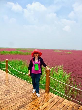 東北旅遊 Photos (216), June 20 to July 4, 2014