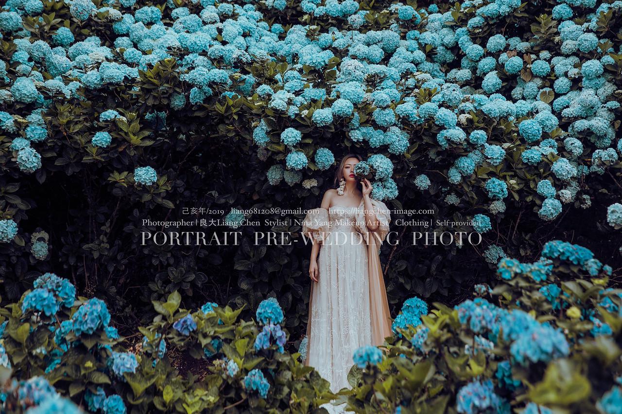 《婚紗》Jenny & Lawrence / 陽明山繡球花、好樣秘境、沙崙海邊、綠野馬場