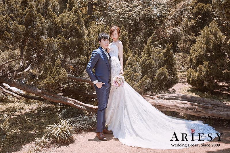 韓風婚紗,新莊婚紗,手工婚紗,繡球花婚紗,Ariesy,巴里婚紗