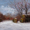 Cold Winter's Harvest 12x24 $850