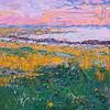 Summer's Sunset 8x10 $350 w