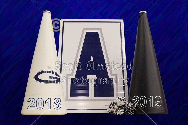 CHEER GALLERY 2018-2019
