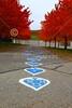 Granville Blue Aces Stadium - Friday, October 26, 2012 - Columbus, Academy Vikings at Granville Blue Aces - Senior Night