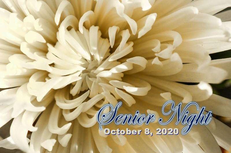 Senior Night - Zanesville High School Blue Devils at Granville High School Blue Aces - Thursday, October 8, 2020