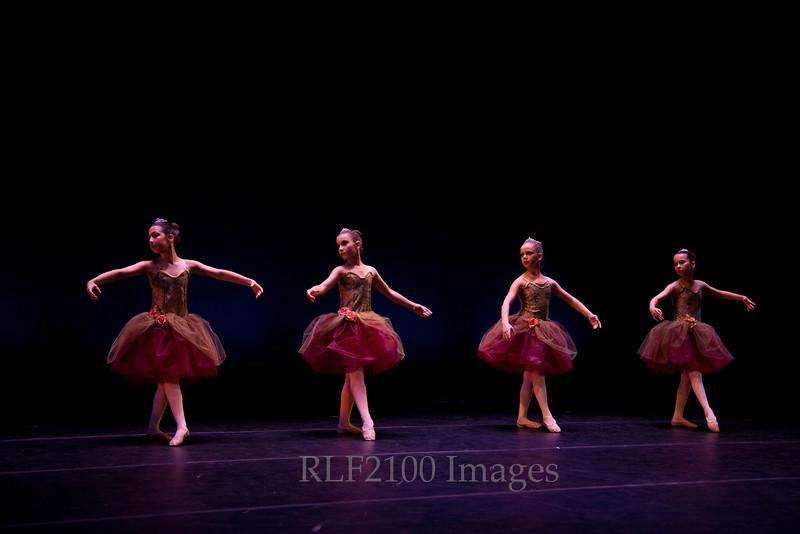1159_RLF_NYAB_9949 / Bardavon Concert 2009