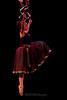 2232_RLF_NYAB_0895 / Bardavon Concert 2009