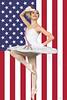 026_RLF_NYAB_2014_01_12_FLAG-FLIP_By-RL Furlong (2)<br /> 2014 NYAB Bardavon Show Poster Image