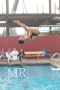 MR1_5376_CMS, Dive