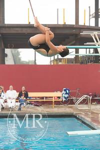 MR1_5281_CMS, Dive