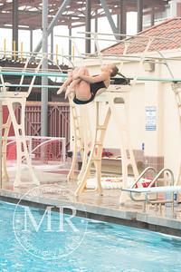 MR1_5311_CMS, Dive
