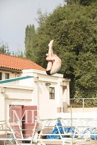MR1_5411_CMS, Dive