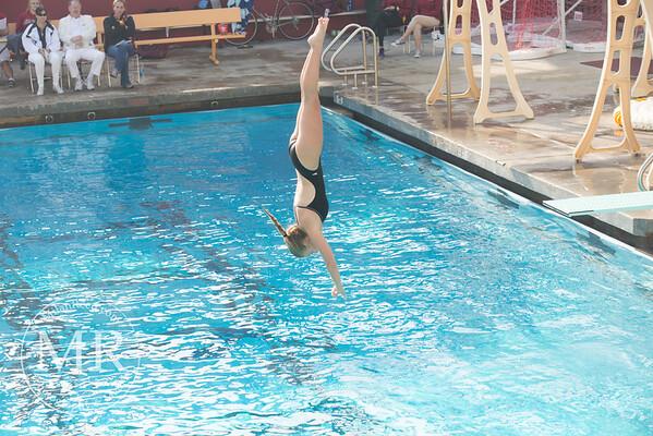 MR1_5447_CMS, Dive