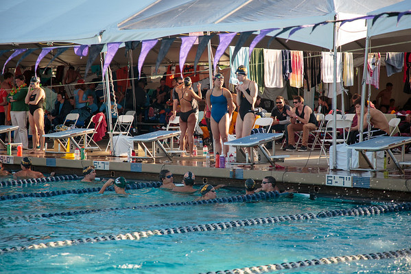 001_20160221-MR1D9081_Championship, CMS, Swim, Finals_3K