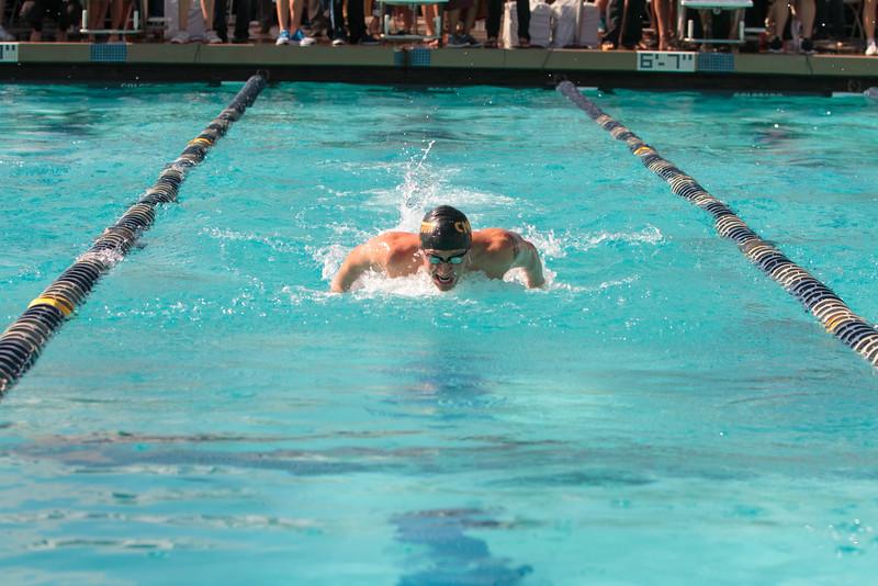 146_20160221-MR2B8539_Championship, CMS, Swim, Prelims_3K