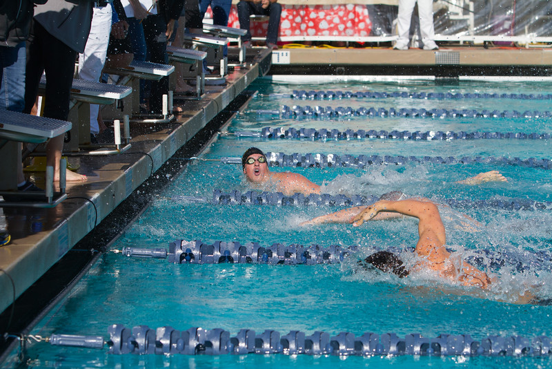 063_20160221-MR2B8014_Championship, CMS, Swim, Prelims_3K