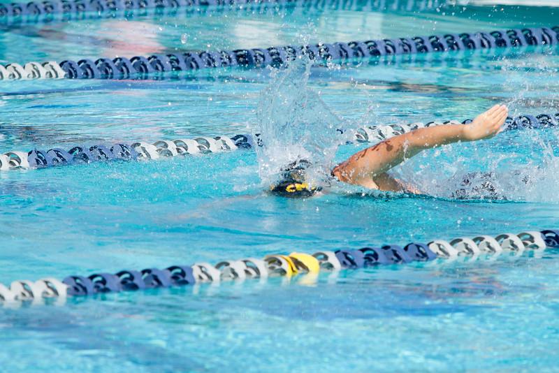 195_20160221-MR2B8731_Championship, CMS, Swim, Prelims_3K