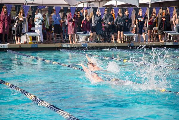 018_20160221-MR1D8179_Championship, CMS, Swim, Prelims_3K