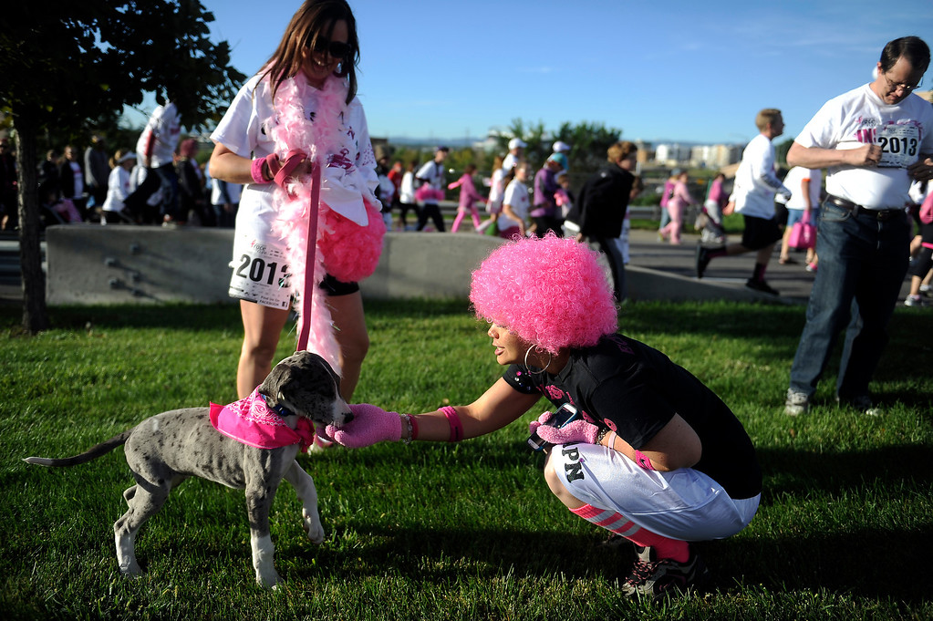 . DENVER, CO - SEPTEMBER 29: Christina Echeman, pets Vulcan as it\'s owner, Christina Echeman, looks on during the Susan G Komen Race for the Cure in Denver, Colorado on September 29, 2013. Approximately 30,000 people participated in this years race. (Photo by Seth McConnell/The Denver Post)
