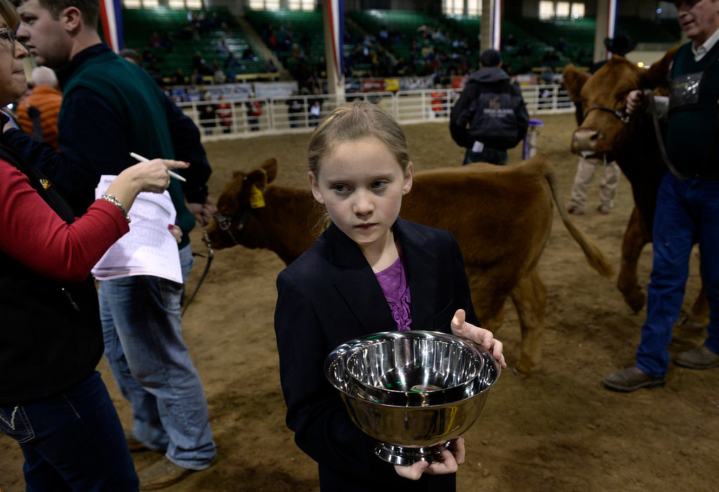 . DENVER, CO - JANUARY 13: Carlee Vavra, 11, from Nisland, South Dakota, has the honor of presenting the silver cup and award banner for the female Gelbvieh grand champion. The National Gelbvieh and Balancer Show takes place inside the Stadium Arena at the National Western Stock Show in Denver on Monday, Jan. 13, 2014. (Photo by Kathryn Scott Osler/The Denver Post)
