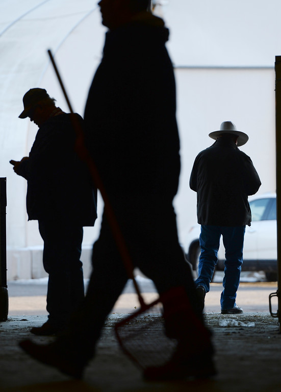 . DENVER, CO. - JANUARY 10: Ranchers and their employees went about their business setting up for the stock show Friday afternoon. The National Western Stock Show starts Saturday, January 11, 2014. Photo By Karl Gehring/The Denver Post