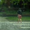 storm_05_22_hc