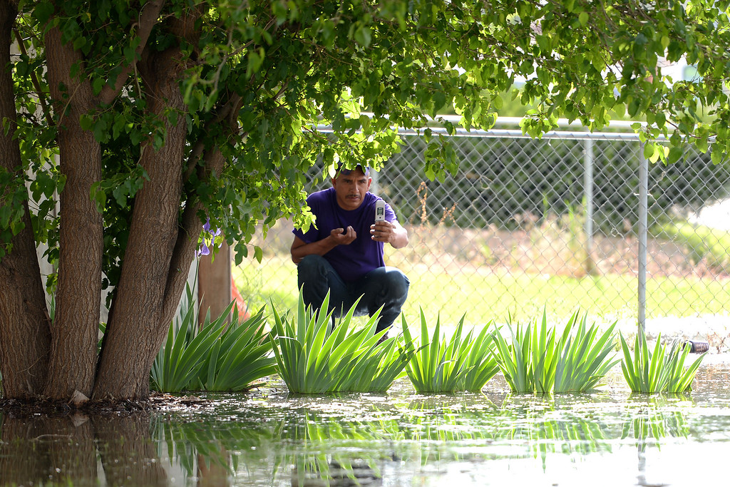 . A man squats to take a picture with his flip phone after an area of town flooded. A heavy rain caused parts of Greeley to flood on Monday, June 2, 2014. (Photo by AAron Ontiveroz/The Denver Post)