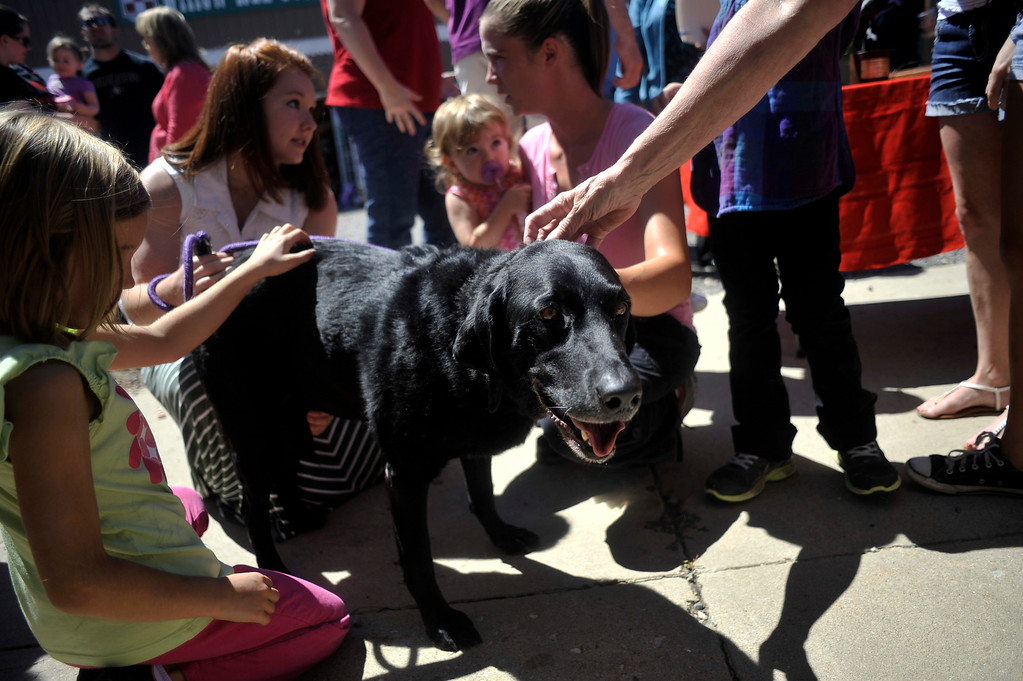 . BROOMFIELD, CO. - AUGUST 2: Lily Matthews (Left), 6, and others pet retired arson dog Sadie. The Colorado Bureau of Investigation held a retirement ceremony for Sadie at Willow Run Feed & Supply in Broomfield Saturday, August 2, 2014. (Photo By Patrick Traylor/The Denver Post)