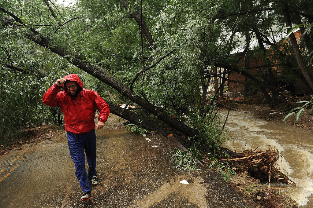 . Charlie Schmidtman makes his way through downed trees along Main Street in Jamestown, CO on September 15, 2013.     A dozen or so residents stayed as most of the town was evacuated by those helicopters. The town has no infrastructure or running water.  Some parts of town amazingly enough have electricity.  (Photo By Helen H. Richardson/ The Denver Post)