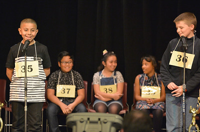 VAC-L-2017 County Spelling Bee-0309-004