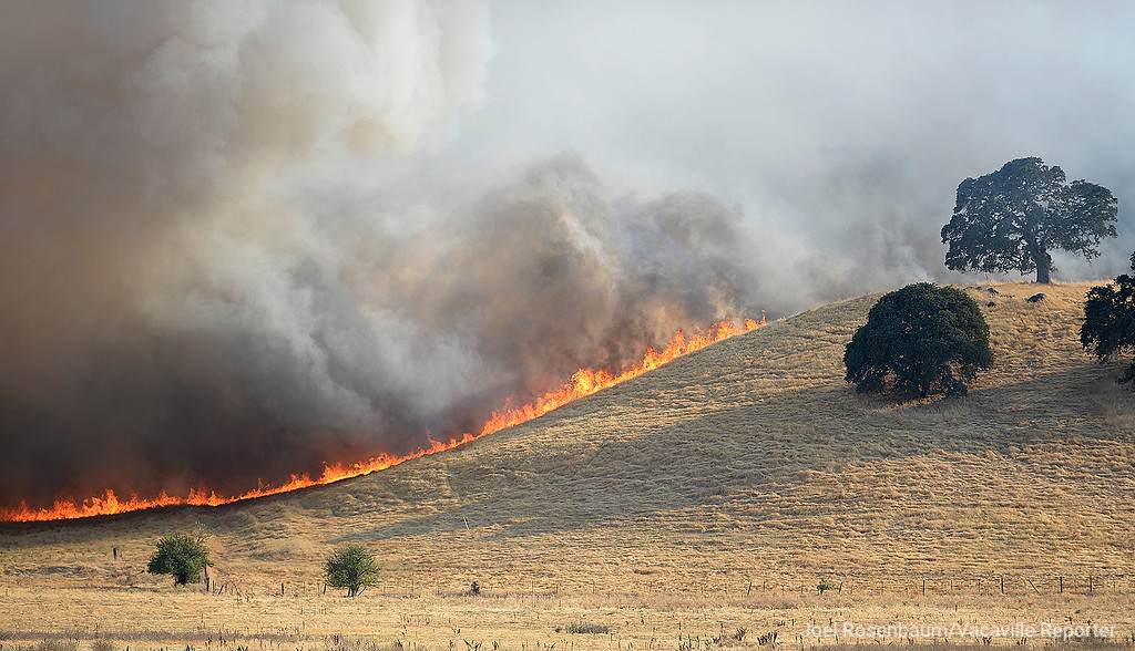 . Fire burns out of control along the hillside above Lagoon Valley Road Friday in Vacaville as the Nelson Fire burns toward the hills above the park.