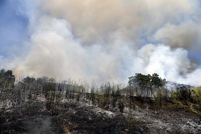 VAC-L-Oak Fire-0723-006