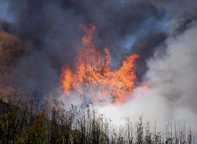VAC-L-Oak Fire-0723-001
