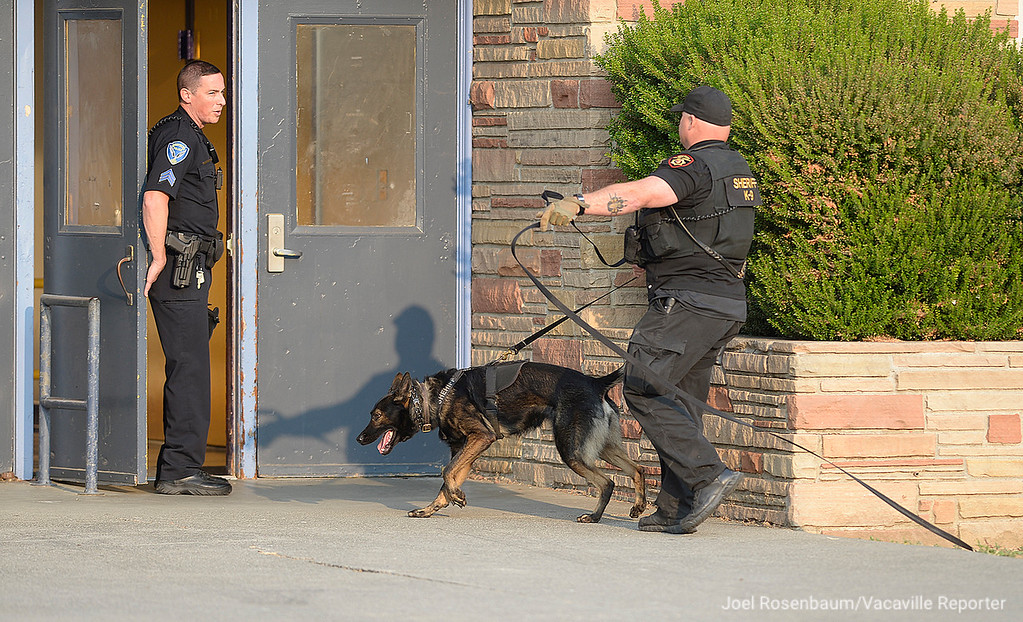 . A Solano County Sheriff\'s K9 officer enters E. Gary Vaughn Gymnasium to search for items that homicide suspect may have dropped as he hid in the gym with approximately 500 students and parents who had been moved from the football game when the campus was placed on lockdown.