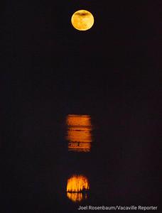 VAC-L-Wolf Moon-0114-001
