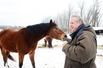 Erica Miller @togianphotog - The Saratogian:  Duane Carpenter, owner of the property on Wilton/Greenfield Road, with one of their dozen horses in Greenfield. The property has been in a long term neglect case for over 3 years. Carpenter is the brother of Ann Arnold, the previous owner.
